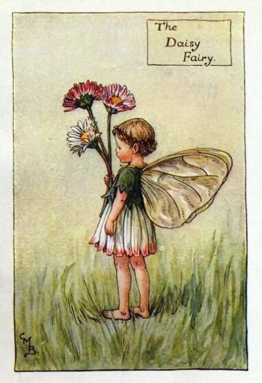 Daisy-Flower-Fairy-Vintage-Print
